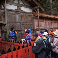 日吉大社の社殿と歴史1―カツラ・アオイ